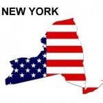 New York dog bite fatalities
